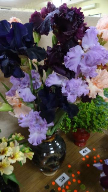 151019 Spring FlowerShow